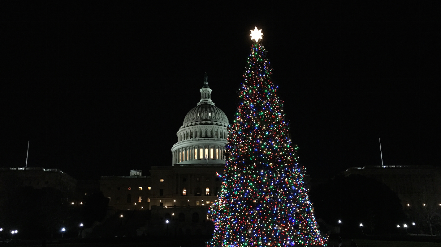 Capitol Christmas Tree.Capitol Christmas Tree Adventures In Dc