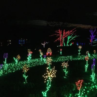 Meadowlark Botanical Gardens Winter
