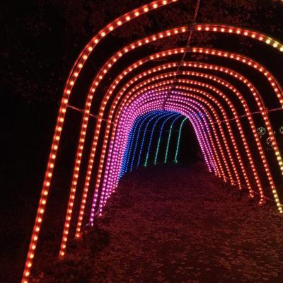 lights meadowlark botanical gardens